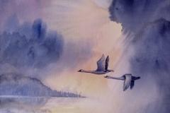 04.3-Stille mit Flügelrauschen