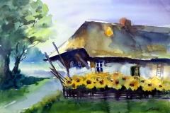 Bauernhof mit Sonnenblumen