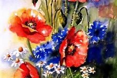 03-Farbenprächtige-Feldblumen