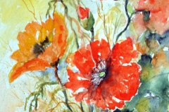 07-Mohn-in-Glasvase