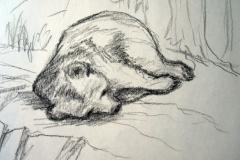 12-Bärenschlaf