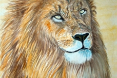 Alter-Löwe